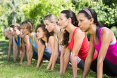 Fitness group planking in park — Stock Photo