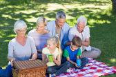 Famille ayant pique-nique dans le parc — Photo