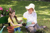 Grandmother with her granddaughter gardening — Stock Photo