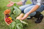 Handsome farmer with basket of veg — Stock Photo