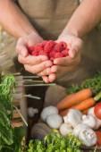 Farmer showing his organic raspberries — Stock Photo