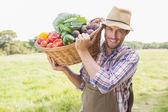 Farmer carrying basket of veg — Stock Photo