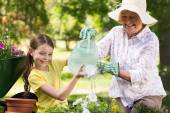 Grandmother with granddaughter gardening — Stock Photo
