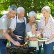 Family doing barbecue in the park — Stock Photo #69012397