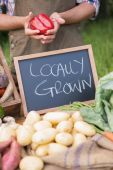 Farmer selling organic veg at market — Stock Photo
