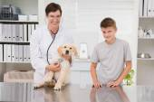 Vet examining a dog with its owner — Stockfoto