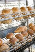Display of breads freshly baked — Stock Photo