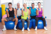 People working out on exercise balls at gym class — Stock Photo