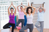 Friends practicing tree pose in fitness studio — Stock Photo