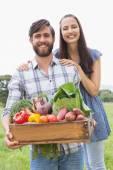 Happy couple with box of veg — Stock Photo