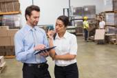 Focused warehouse managers working — Stock Photo