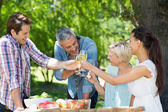 Happy friends toasting at the park — Stock Photo