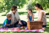 Happy family on picnic in the park — Stock Photo