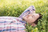 Handsome man relaxing in field — Stockfoto