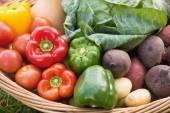 Basket of fresh organic veg — Stock Photo