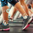 Row of people working out on treadmills — Stock Photo #69039011