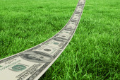 Dollar road against grass — Stock Photo