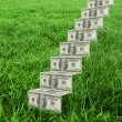 Steps of dollars against grass — Stock Photo #69056019
