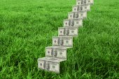 Steps of dollars against grass — Stock Photo