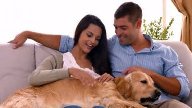 Happy couple with their dog at home — Stock Video