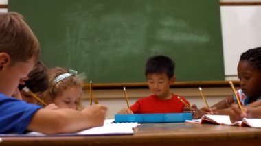 Cute pupils in classroom at school — Stock Video