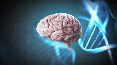 Brain on dna background — Stock Video