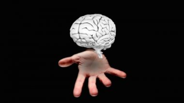Hand presenting a spinning silver brain — Stock Video