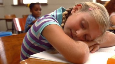 Schoolchild napping on notepad at school — Stock Video