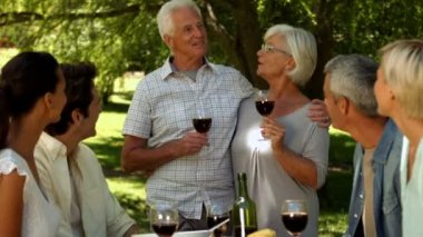 Older couple toasting with family in park — Stock Video