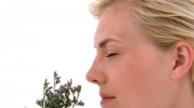 Blonde woman smelling dried lavander — Stock Video