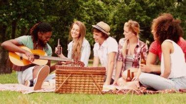 Friends in the park having picnic — Stock Video