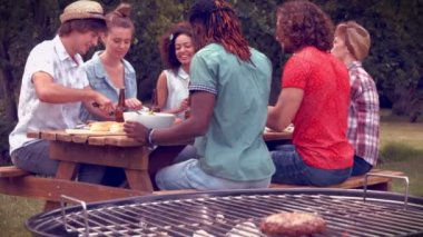 Friends in the park having barbecue — Stock Video