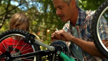 Father and son fixing bike in park — Stock Video