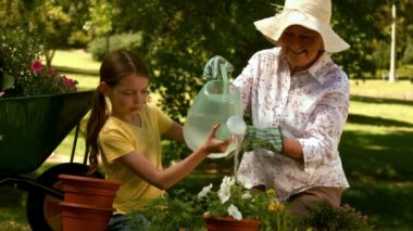 Grandmother and granddaughter gardening together — Stock Video