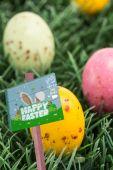 Easter egg hunt sign — Stockfoto