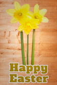 Happy easter against daffodils with stems — Stock Photo