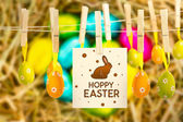 Easter eggs grouped together on straw — Fotografia Stock