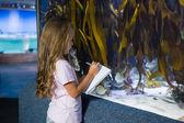 Cute dziewczyna patrząc na akwarium — Zdjęcie stockowe