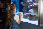 Little girl looking at fish tank — Stock Photo
