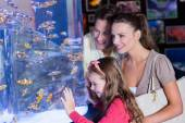 Happy family looking at fish tank — Stock Photo