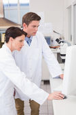 Scientists looking attentively at computer — Stock Photo