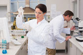 Scientists working with test tube and microscope — Stock Photo