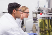 Concentrated scientists observing together  — Stock Photo