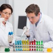 Scientists working attentively with test tube — Stock Photo #73290441