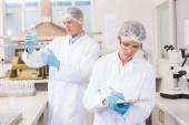 Scientists working attentively — Stock Photo