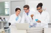 Scientists working together on precipitate tests  — Stock Photo