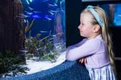 Happy young woman looking at fish — Stock Photo