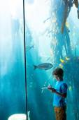 Young man drawing a fish in a tank  — Foto Stock