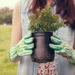 Happy woman holding potted flowers — Stock Video #73496639