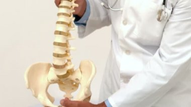 Doctor looking at spine model — Stock Video